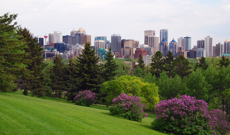 00_0F_TO_panoramic-view-of-calgary-in-spring-large